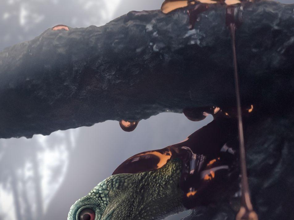"""Le """"plus petit dinosaure"""" jamais découvert est en réalité un lézard"""