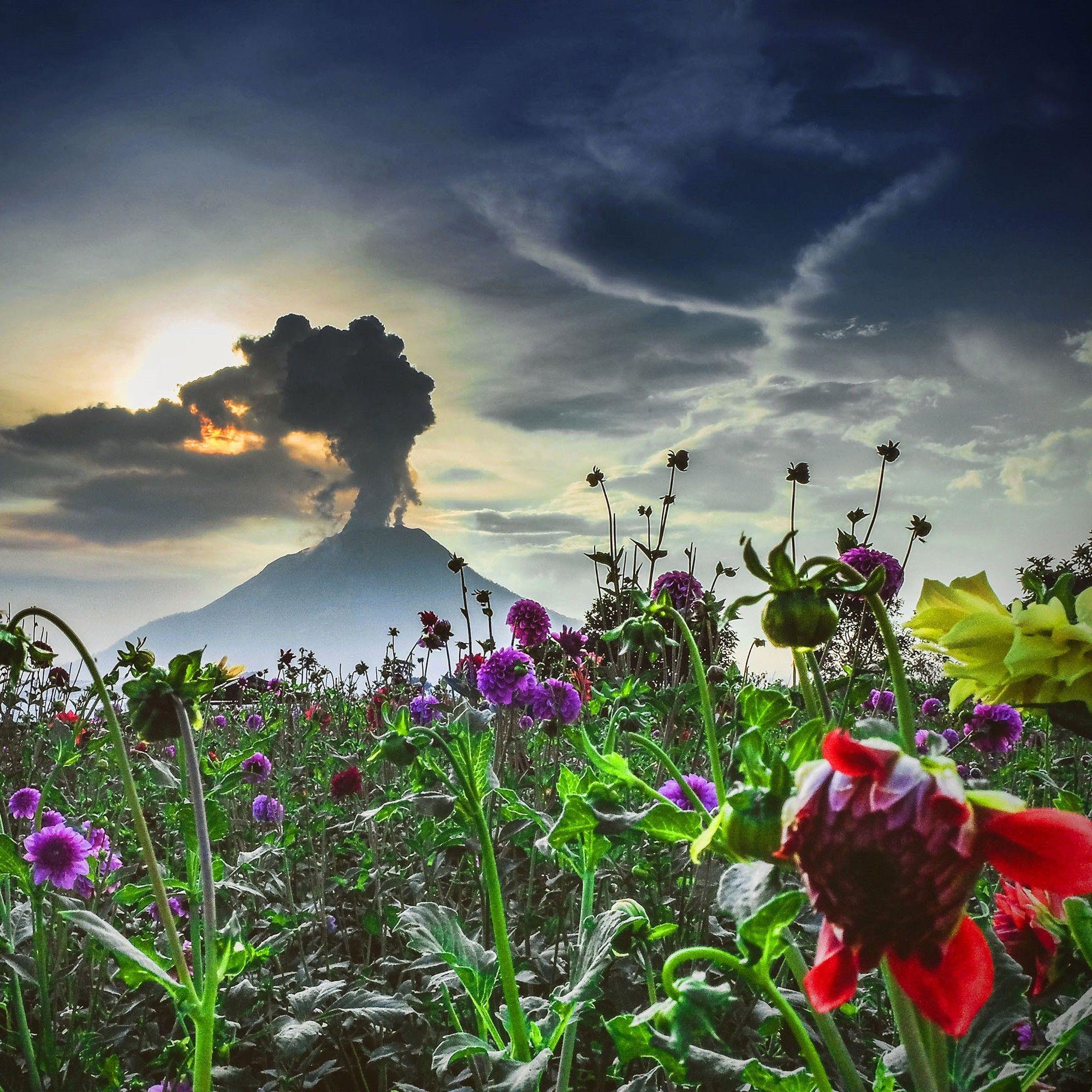La beauté terrifiante des volcans de la planète en images | National Geographic