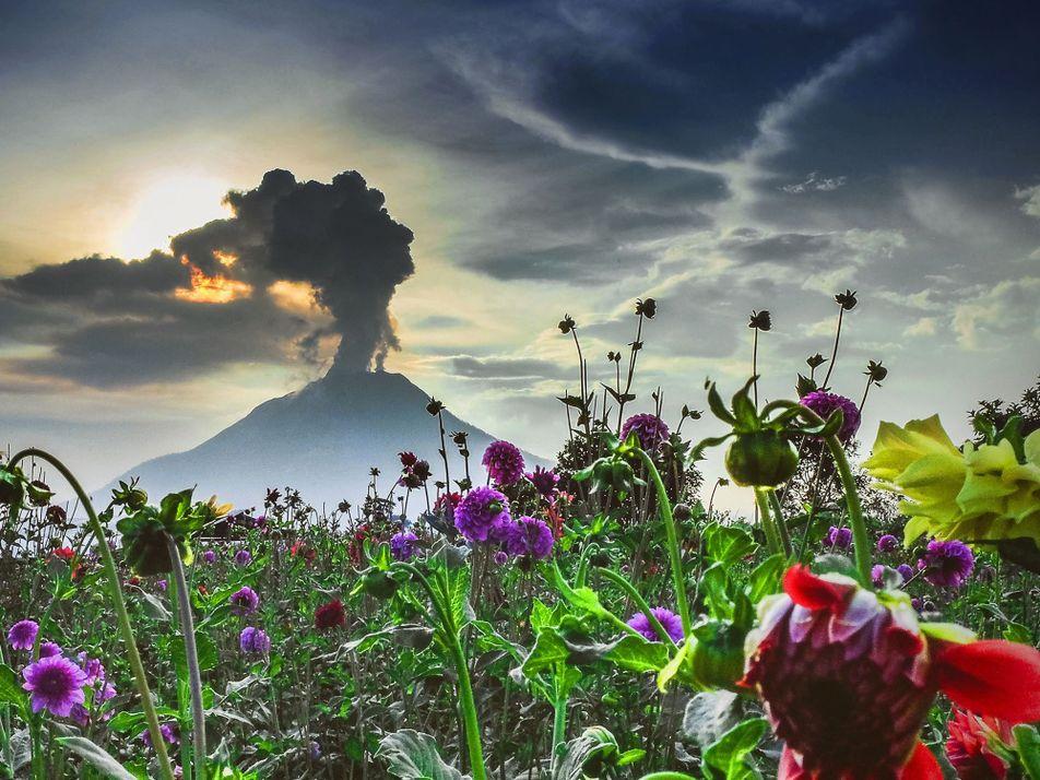 La beauté terrifiante des volcans de la planète en images