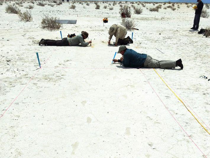 Les scientifiques nettoient avec prudence les empreintes creusées dans le sable avant de les enregistrer en ...