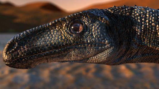 Une nouvelle espèce de dinosaure a été mise au jour au Brésil
