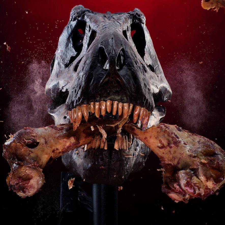 On sait enfin d'où vient la puissance inouïe de la mâchoire du T. rex