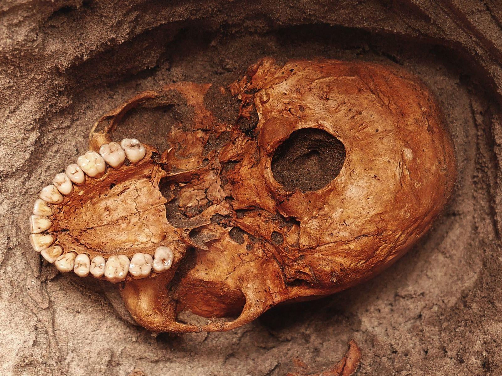 Découverte d'ossements humains vieux de 1 000 ans en Afrique de l'Est