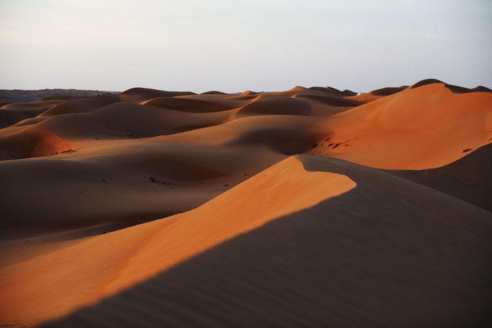Dunes des Wahiba Sands.