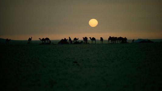 Vies nomades : une ode à l'itinérance par les photographes National Geographic