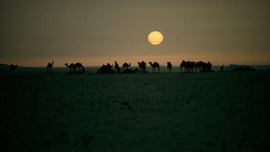 En 1965, Thomas J. Abercrombie a obtenu ce cliché iconique des Bédouins en Arabie Saoudite. Le ...