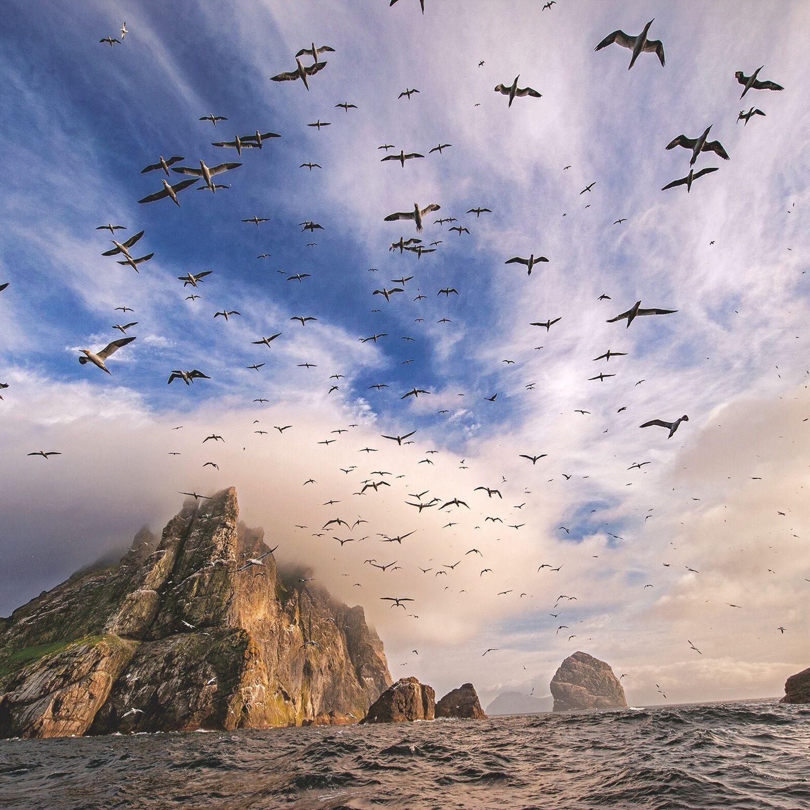 Île coiffée de nuages dans l'archipel de Saint-Kilda, Boreray est l'une des terres les plus sauvages d'Écosse. ...