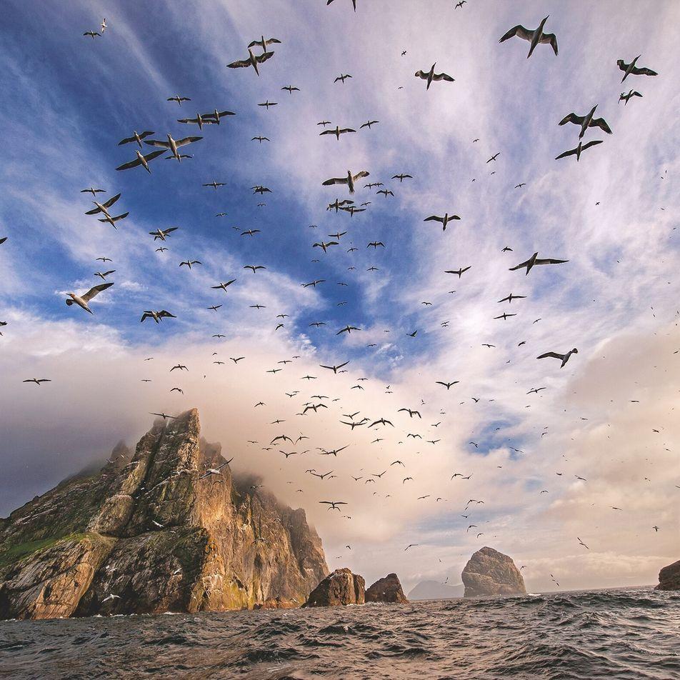Fair Isle : de brume et de pierre