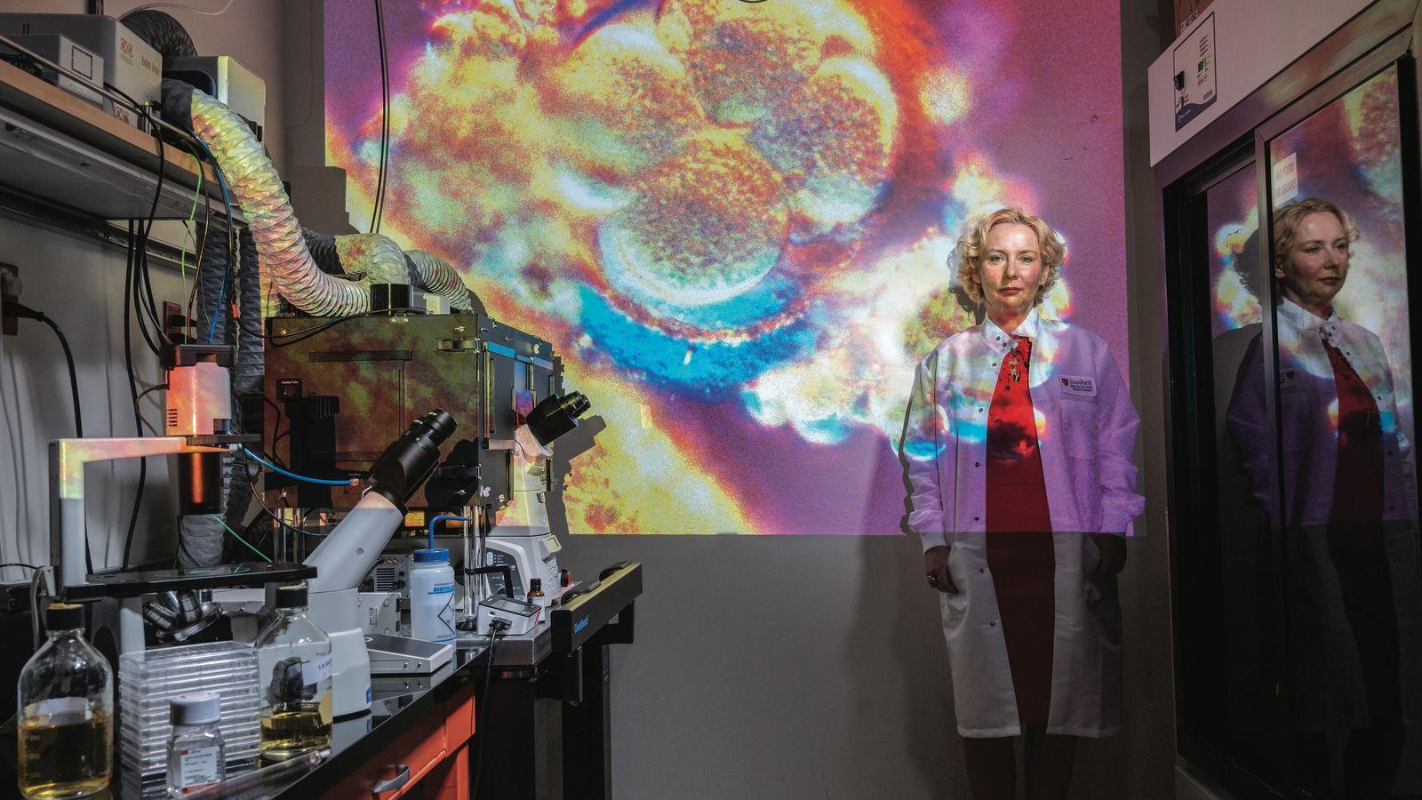 La découverte de virus bénéfiques. Stanford, Californie, États-Unis. Tous les virus ne causent pas des pandémies. Certains ...