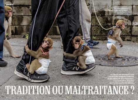 Tradition ou maltraitance ?
