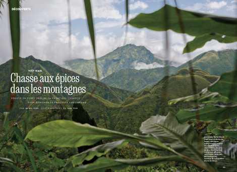 Viêt Nam : chasse aux épices dans les montagnes