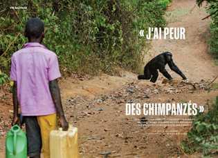 """""""J'ai peur des chimpanzés"""""""