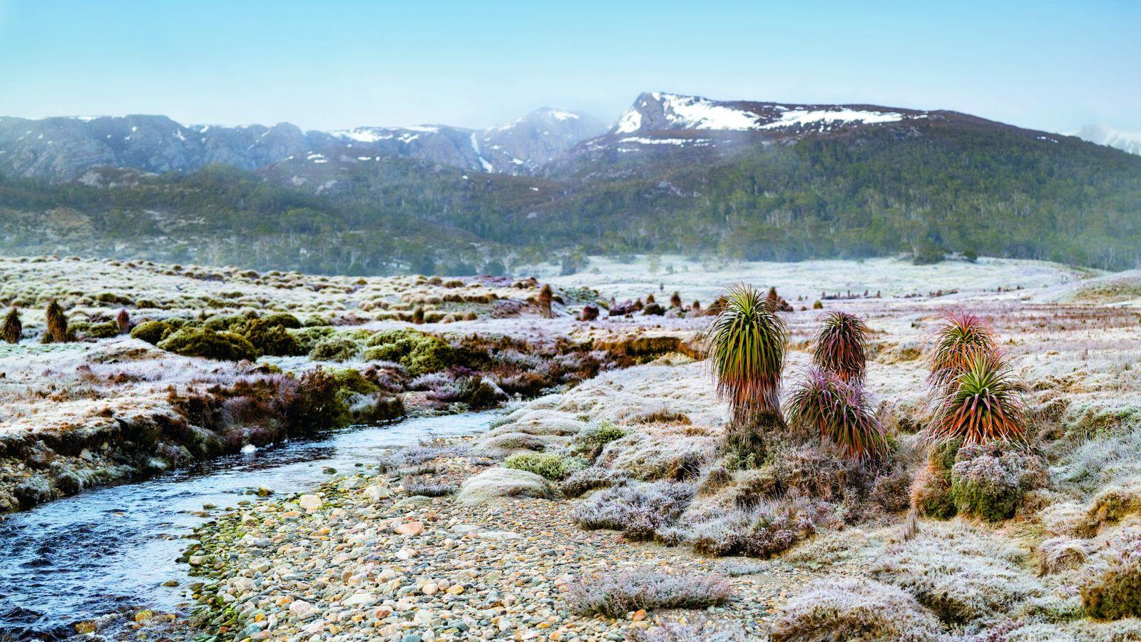Le parc national du mont Cradle-lac St Clair fait le bonheur des randonneurs avec ses sentiers ...