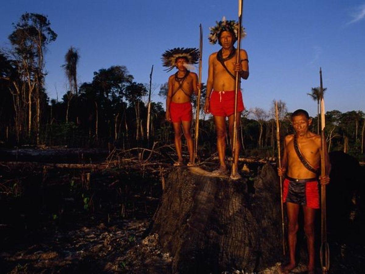 Les indiens Surui
