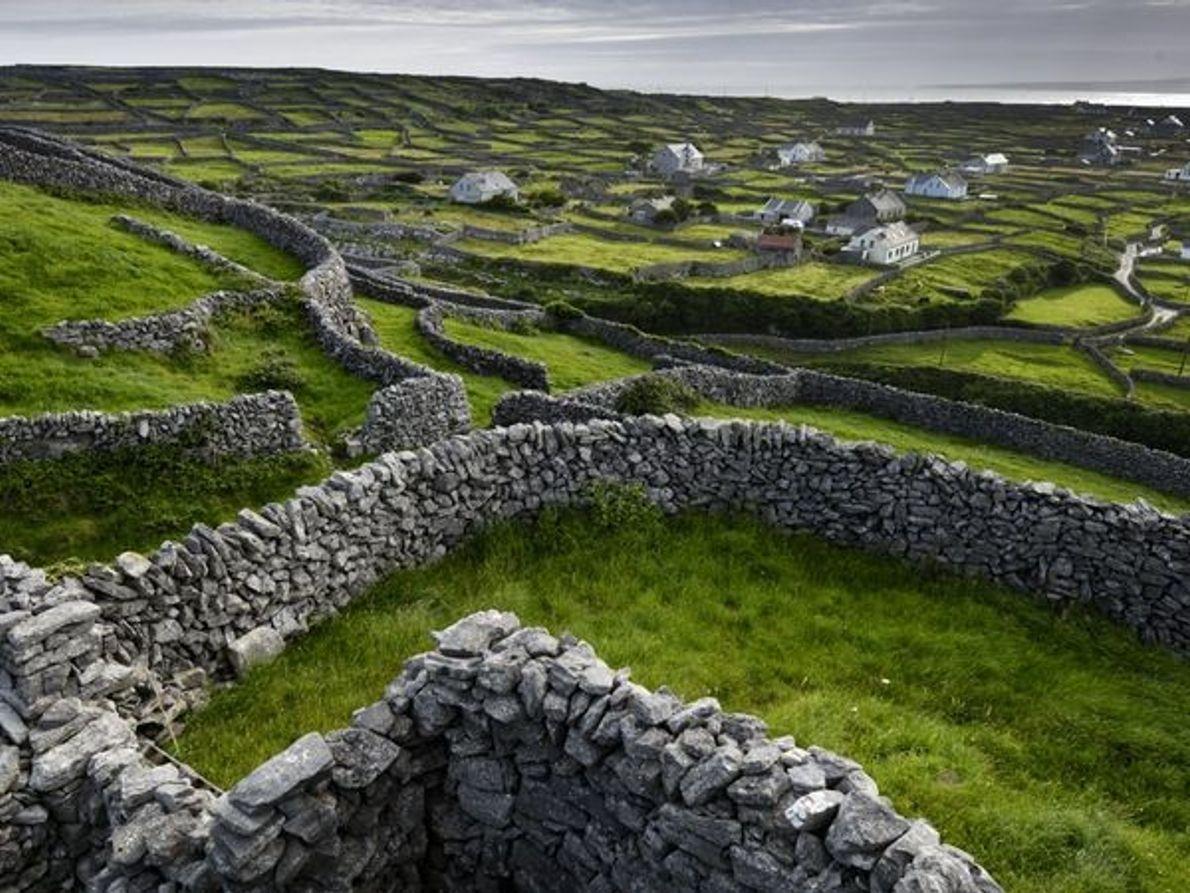 Irlande pastorale