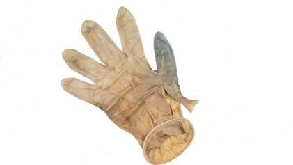 Ce poisson coincé dans un gant en plastique nous rappelle les conséquences écologiques de la pandémie