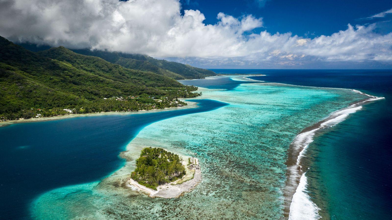Sylvia Earle et des scientifiques marins œuvrent à la protection des écosystèmes marins