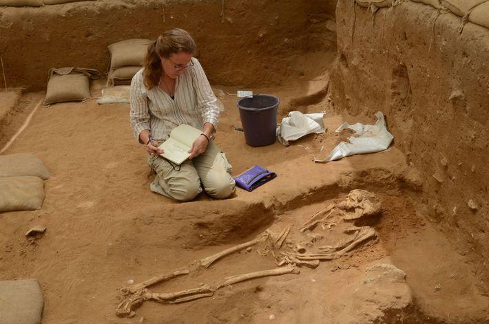 L'ADN prélevé dans des sépultures du cimetière d'Ashkelon établi entre le 10e et le 9e siècle ...
