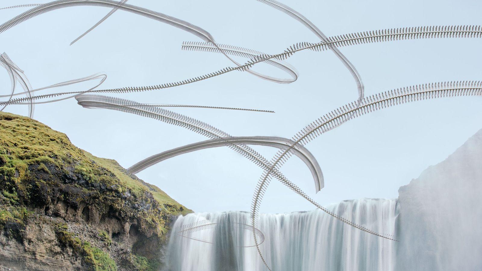 Le vol de fulmars boréals au-dessus de la cascade Skógafoss – leur site de nidification en ...
