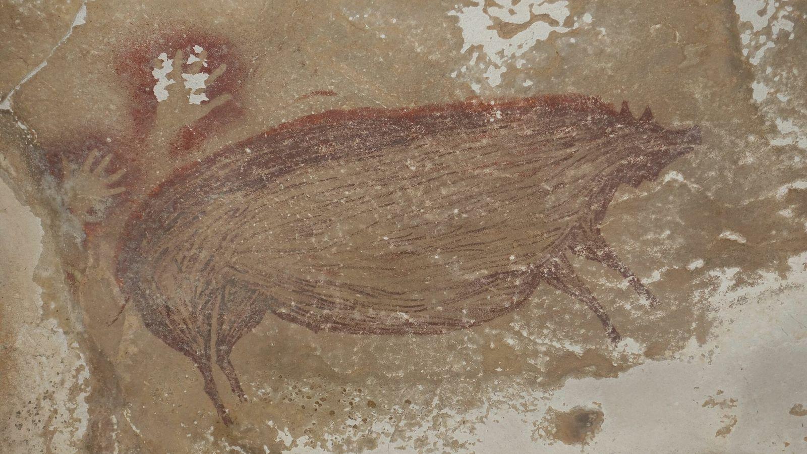 L'artiste à l'origine de cette peinture rupestre d'un imposant sanglier aurait voulu représenter l'une des principales ...