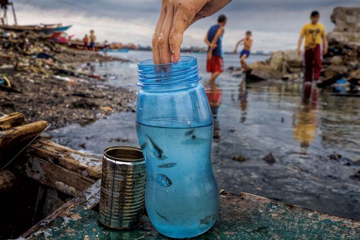Dans la baie de Manille aux Philippines, des enfants attrapent des poissons, non loin d'une écloserie. ...