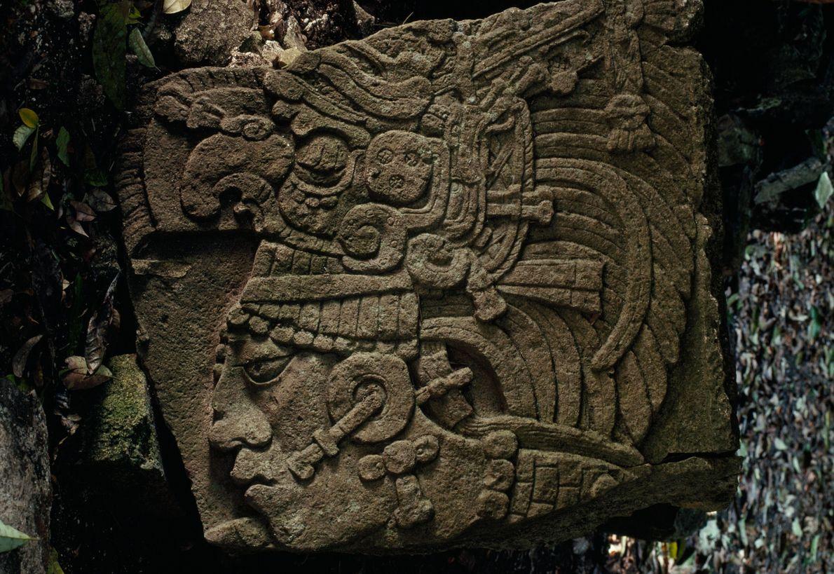 Artefact maya