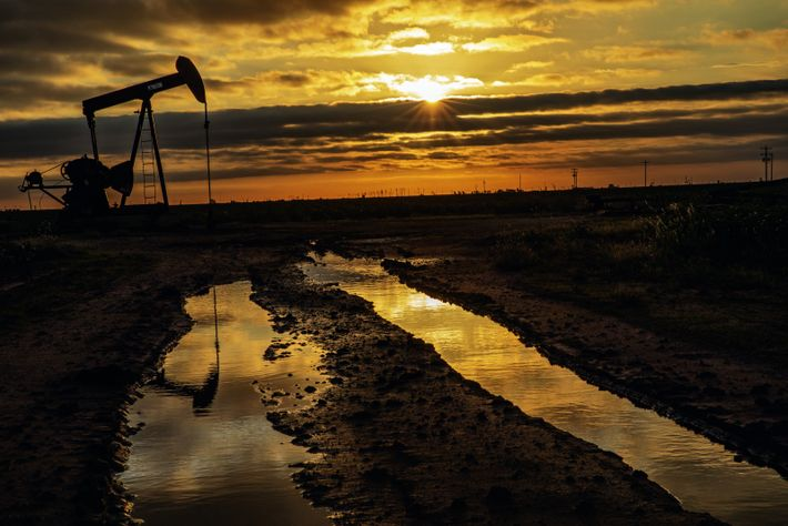 Une pompe dite « à tête de cheval» se balance près de Lubbock (Texas). En 2019, la ...