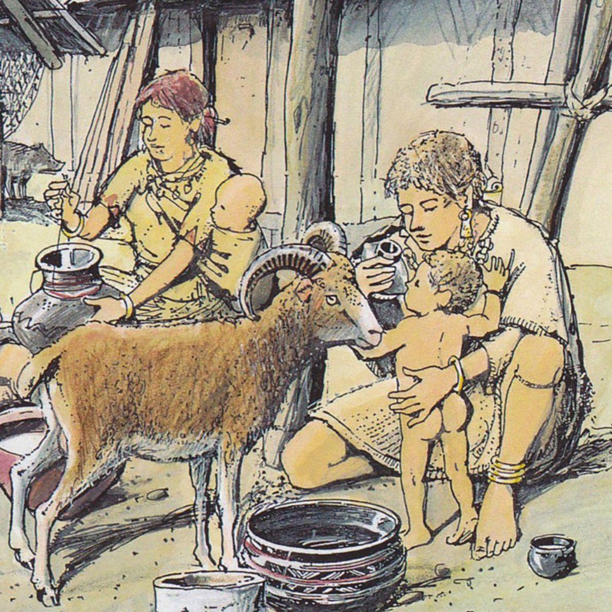 On sait désormais ce que contenaient les «biberons» préhistoriques
