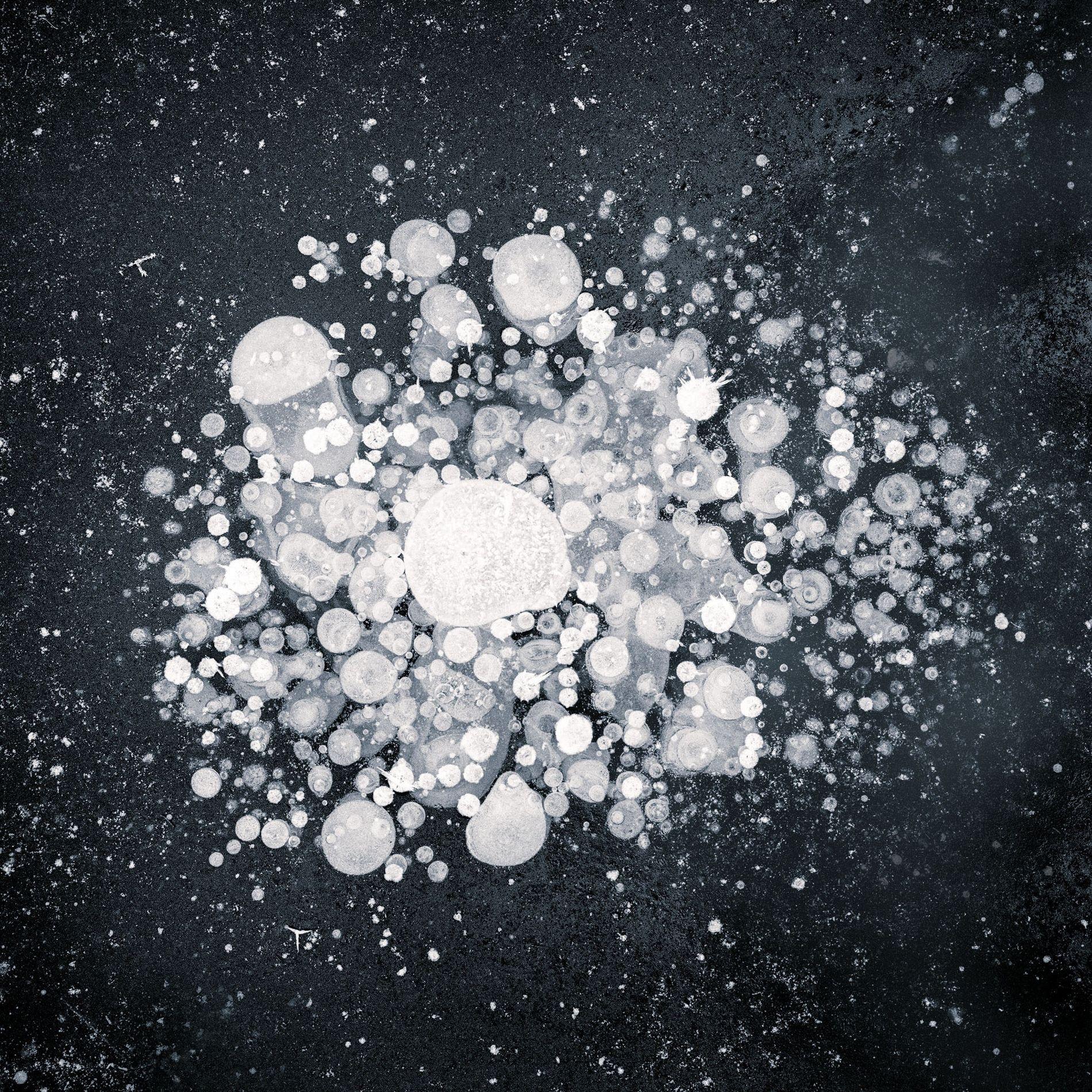Depuis 2010, Ryota Kajita immortalise les fragments de glace qui se forment dans les rivières, les ...