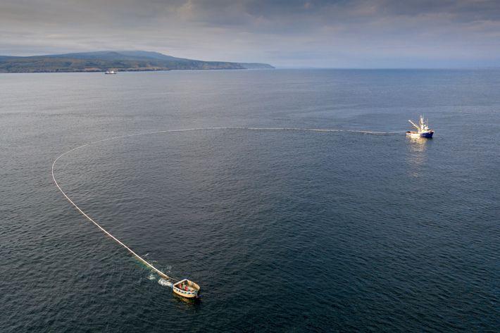 Une senne (un type de filet de pêche) encercle des poissons au large de l'île d'Itouroup, ...