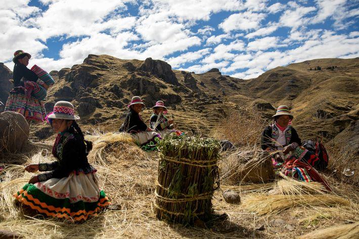 Des femmes quechua sont assises au sommet du canyon et tordent l'herbe d'ichu pour former une ...