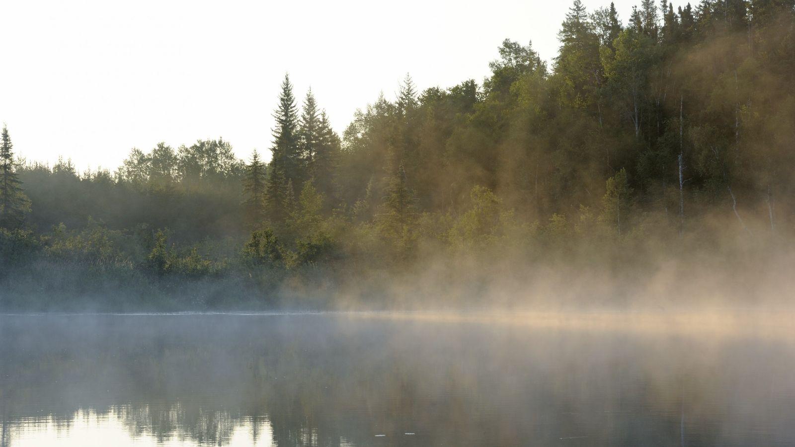 Pour assister au spectacle poétique de la brume s'évaporant à l'aube sur le lac Loïs, dans ...