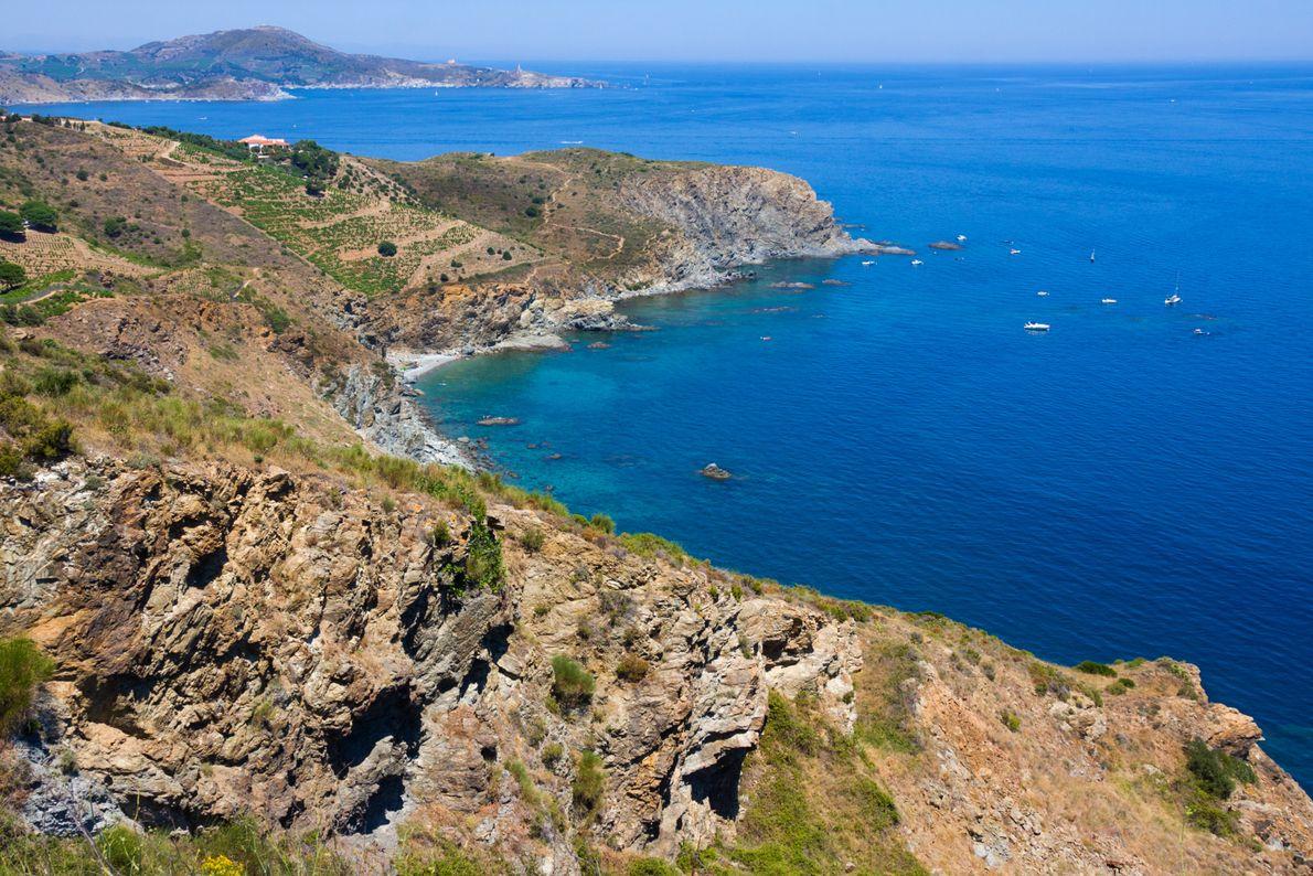 Située sur le côte Vermeille dans les Pyrénées orientales, ce site de 6 km² appelé Réserve ...