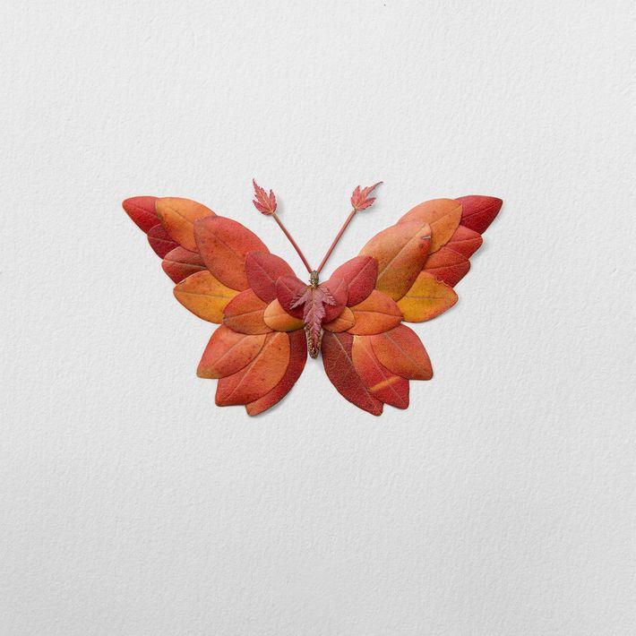 Un papillon aux nuances automnales composé de feuilles de rhododendrons.