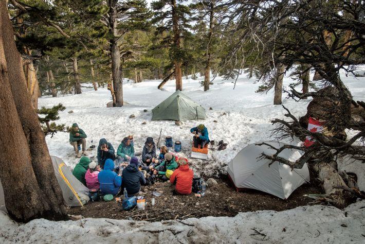 Dans le parc national des Séquoias, en Californie, une «famille de randonneurs » venus du Canada, ...