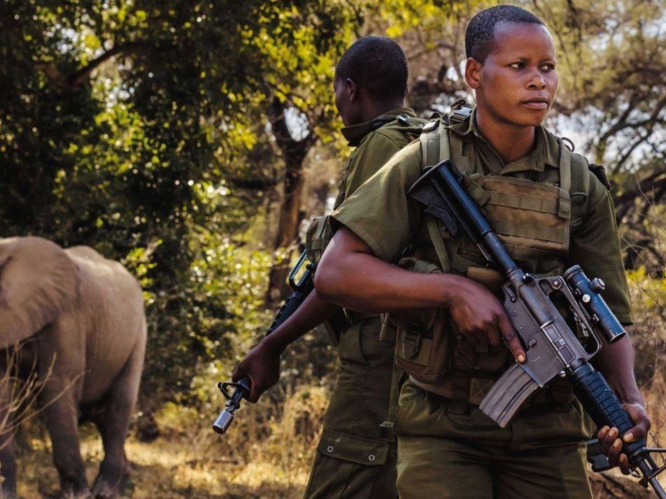 Au Zimbabwe, ces femmes s'unissent contre le braconnage