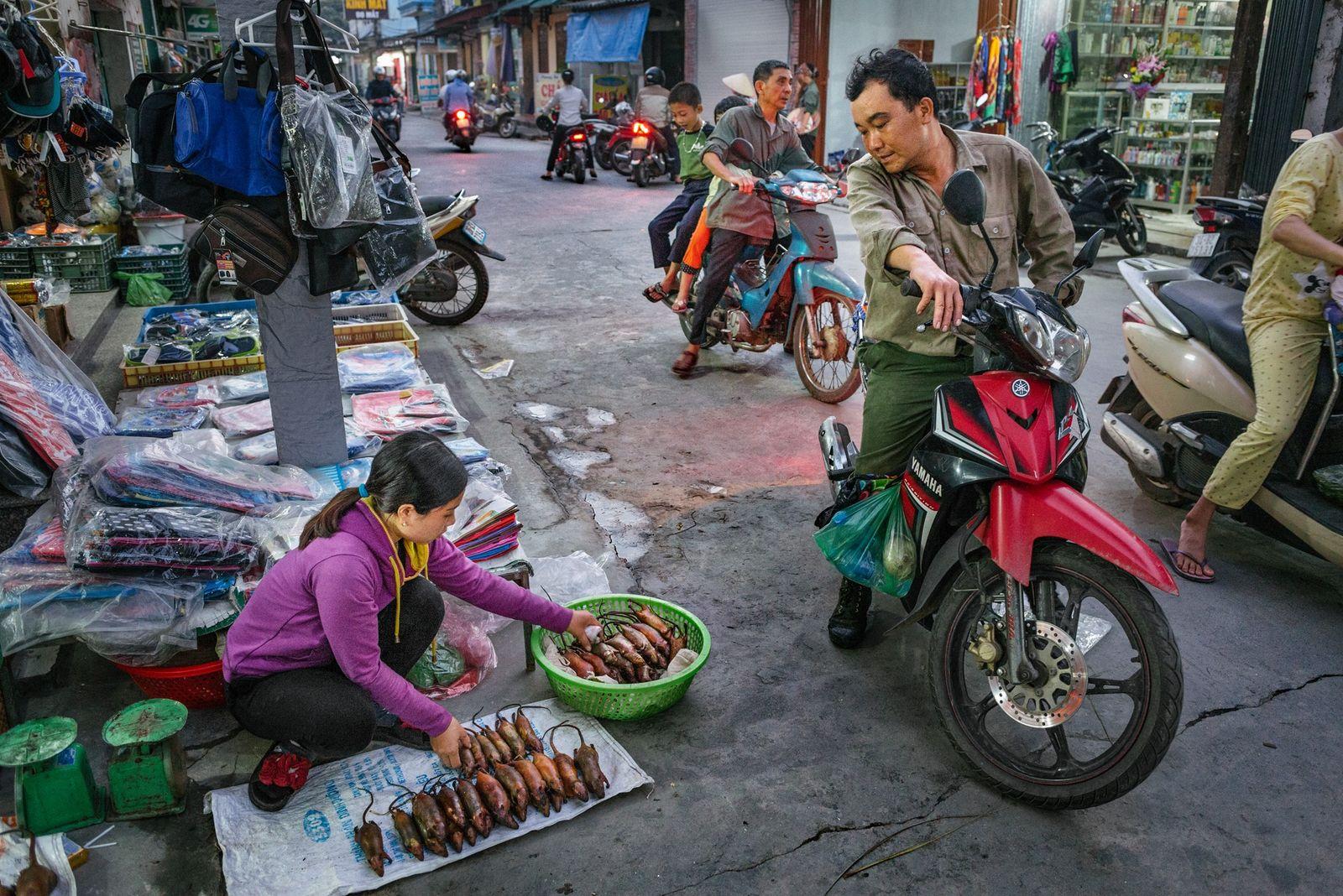 Une vendeuse ambulante expose des rats en vente à Co Dung.