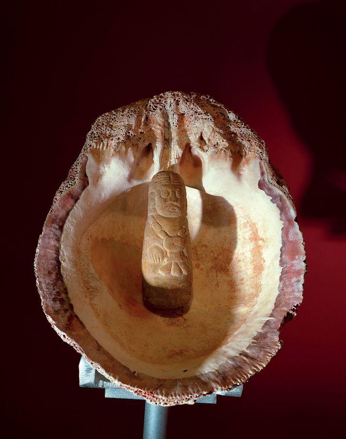 Ce coquillage a été mis au jour dans le tombeau de la Reine Rouge, dans le ...