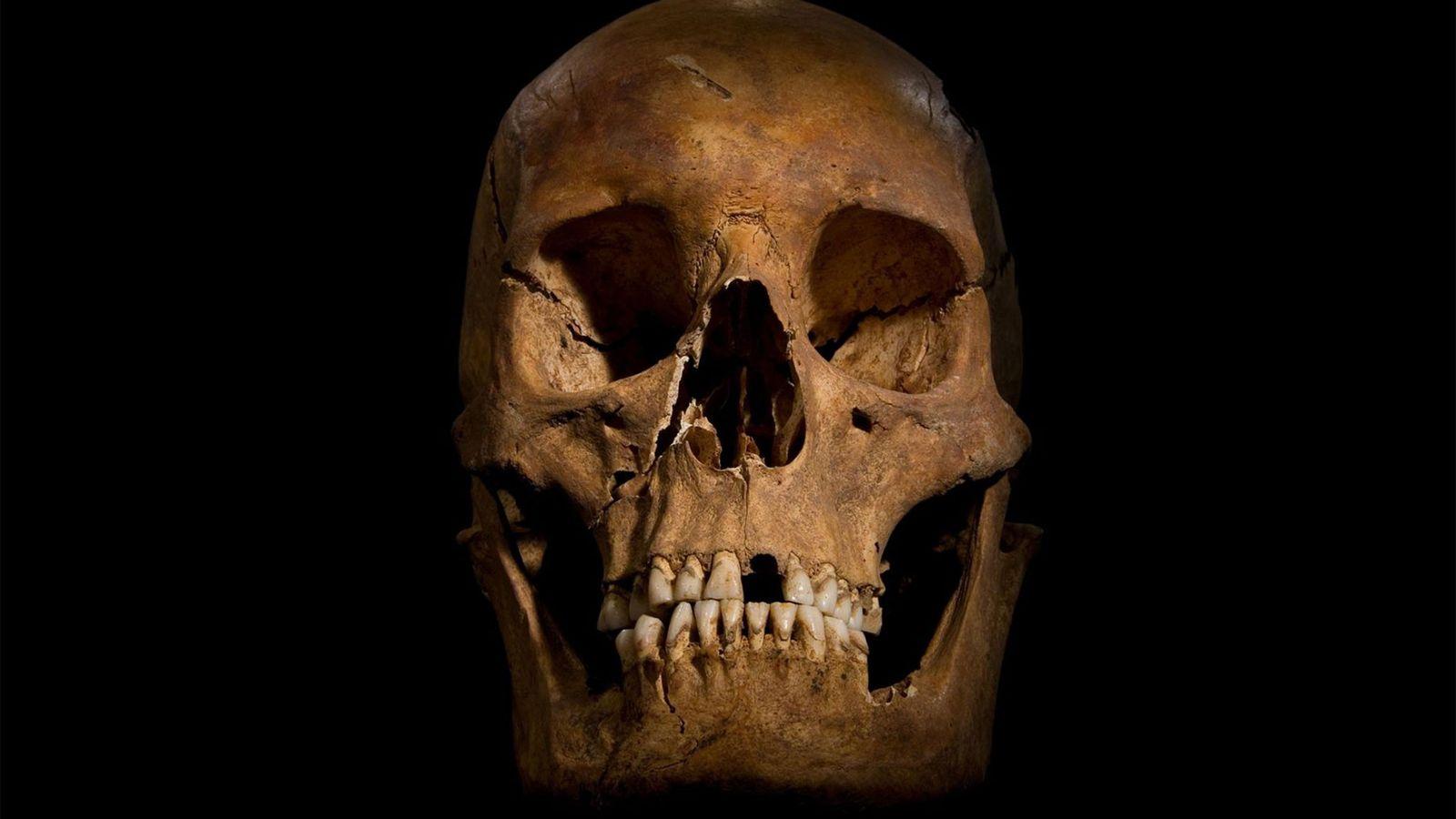 Le crâne de Richard III, découvert sous un parking, a été analysé par des experts judiciaires ...
