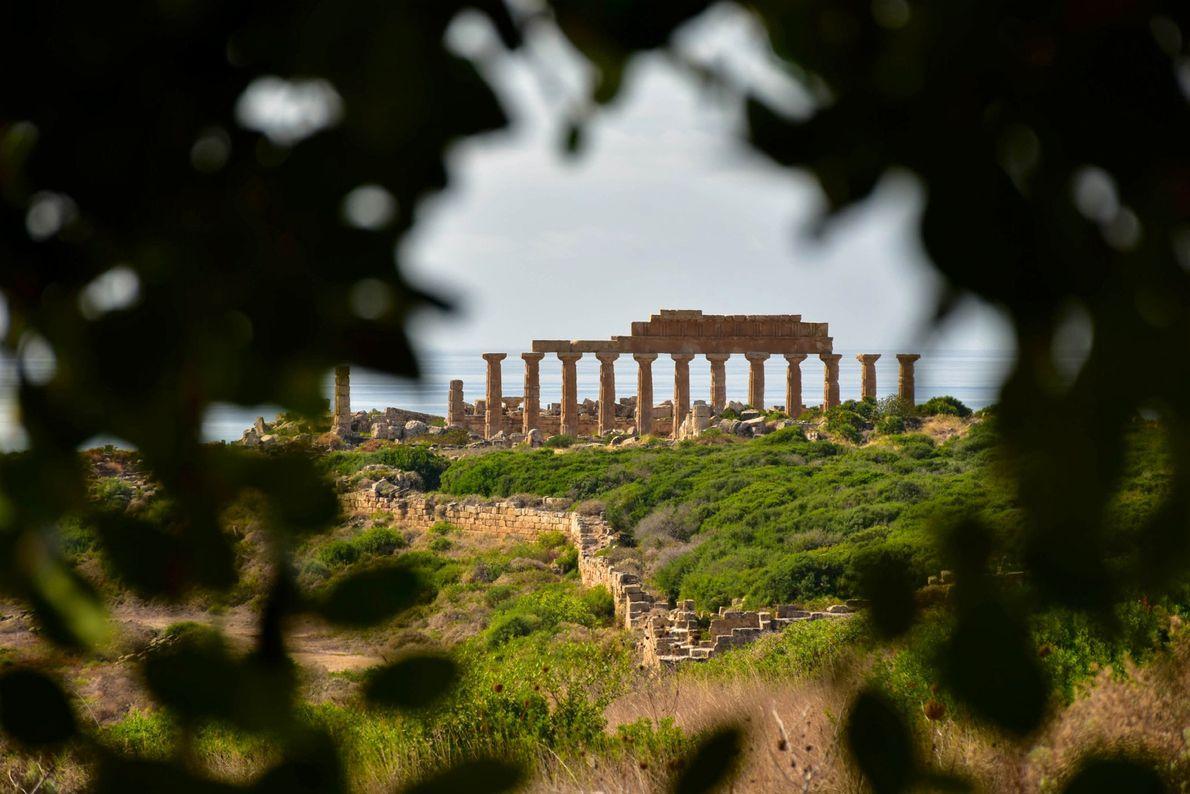 Un épais feuillage encadre les ruines d'un temple de Sélinonte sur la côte méridionale de la ...