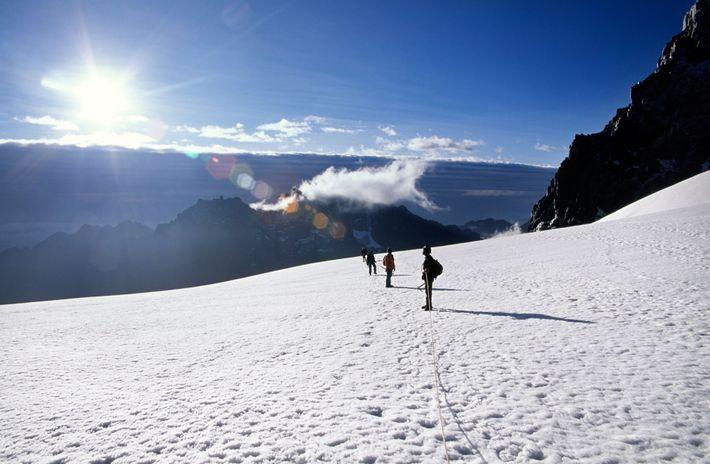Des alpinistes partent à l'ascension du mont Stanley dans les montagnes du Rwenzori, en Ouganda.