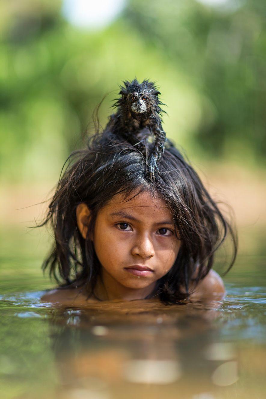 Un tamarin à selle de compagnie est perché sur la tête d'une petite fille dans la ...
