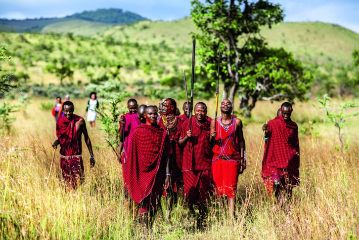 Amis et hôtes masais se rendent à la cérémonie de renouvellement des voeux de mariage de ...