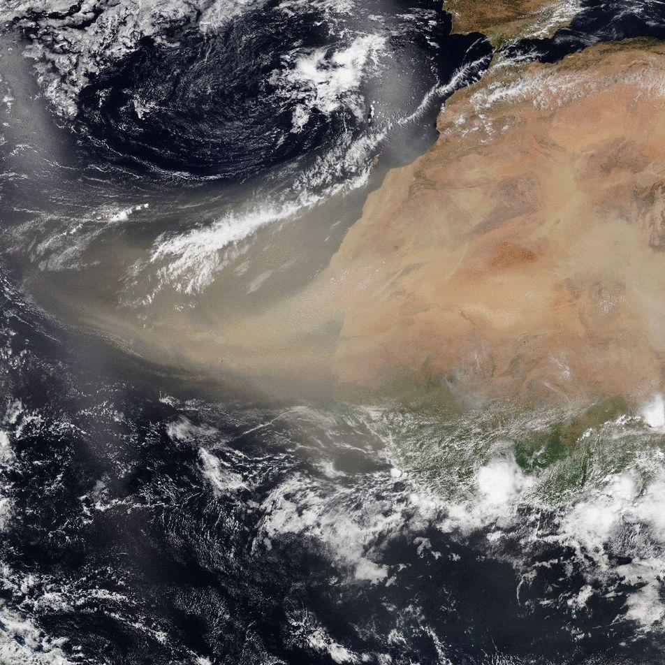 Poussière du Sahara : précieuse pour le climat, nocive pour notre santé