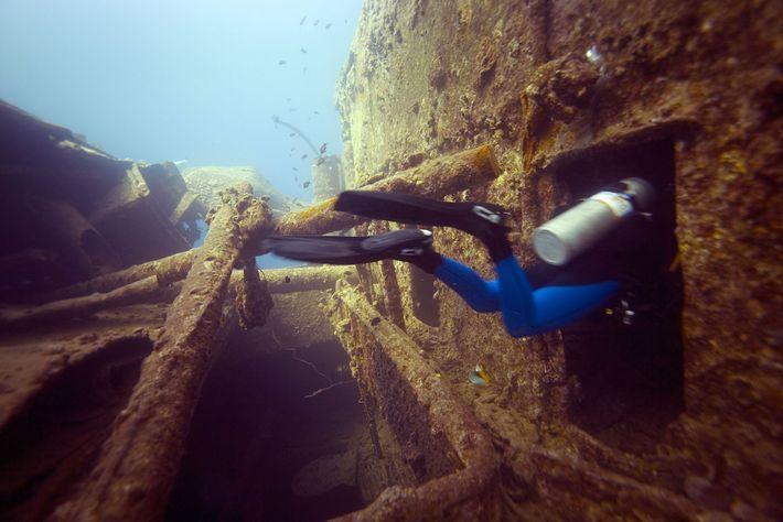 La mer Rouge, Égypte.
