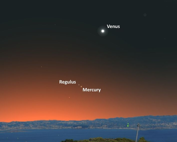 The star and planet will appear very close together in the predawn skies.