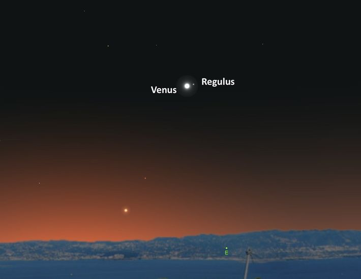 The bright planet Venus will guide the way to the star Regulus on September 20.