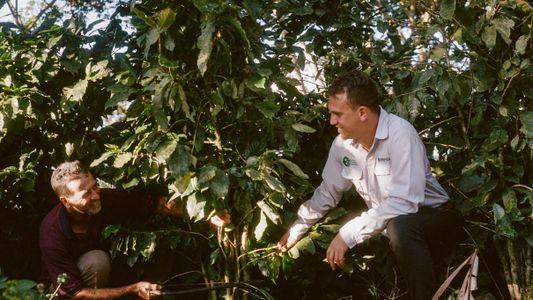 Au Costa Rica, un caféiculteur s'engage sur la voie d'une croissance responsable