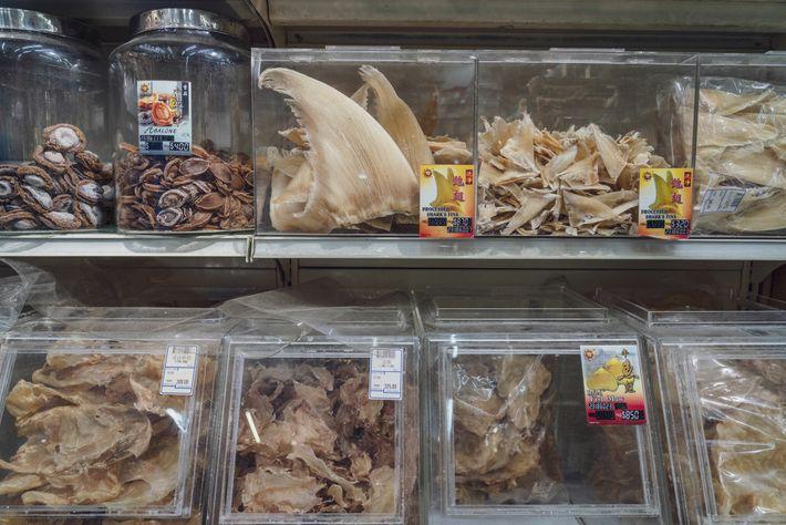 Des ailerons de requins séchés sont triés pour être vendus à Singapour, une des plaques tournantes ...