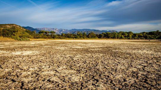 En France, le changement climatique mondial réduit notre approvisionnement en eau. L'année dernière, nous avons battu ...